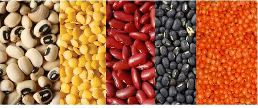 Dals - Indian term used for Lentils