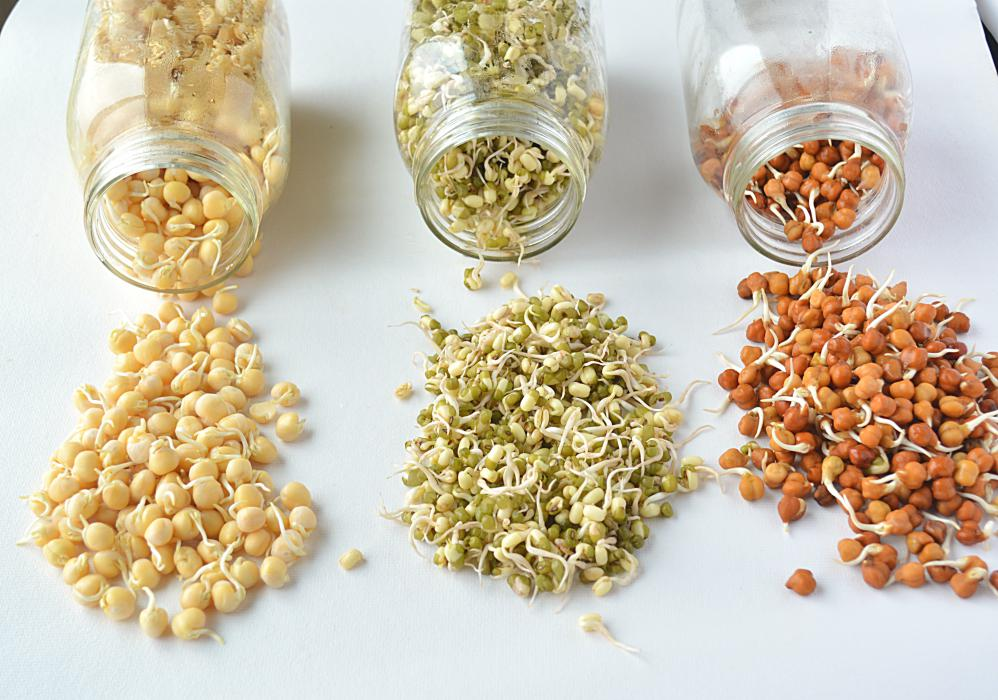 HOW TO MAKE SPROUTS IN A JAR