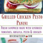 Grilled Chicken Pesto Panini - Ruchiskitchen