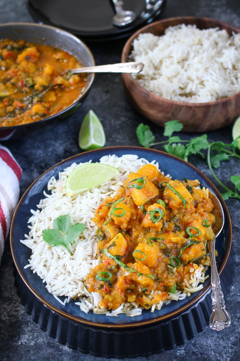 Instant Pot butternut squash curry with rice