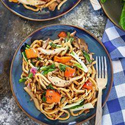 Vegan Stir Fry Udon Noodles