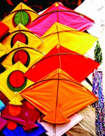 Makar Sankranti – Harvest festival